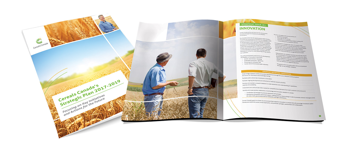 Cereals Strategic Plan